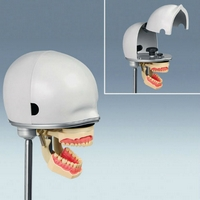 PK-1 Base Level Mannequin Head